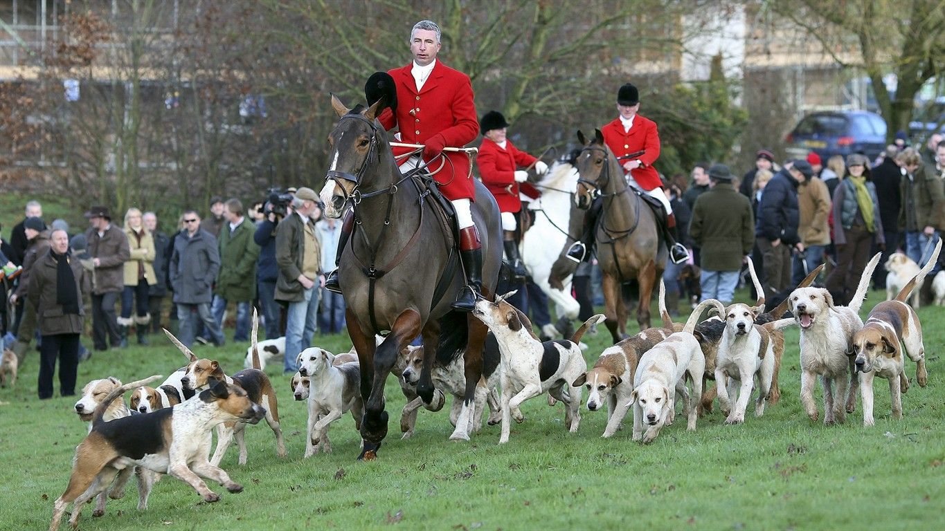 a discussion on the fox hunting issues in the great britain