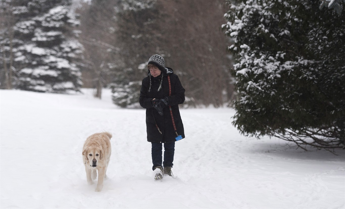 Winter Storm Southern Ontario: Winter Storm Settles Into Southern Ontario, Stretches From