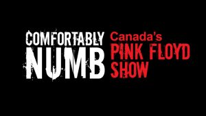 Comfortably Numb – Canada's Pink Floyd Show - The Wall Tour Retrospective 2018 @ Algonquin Commons Theatre